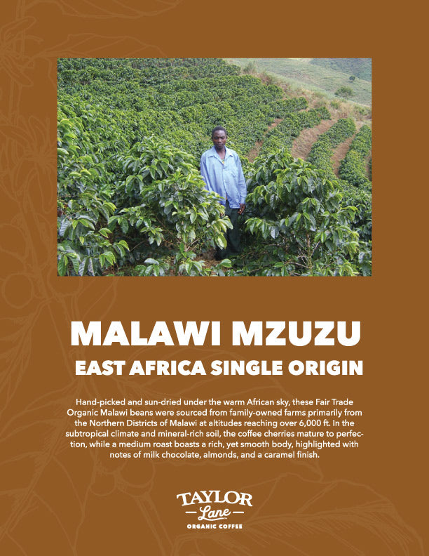 Organic Malawi Mzuzu Single Origin