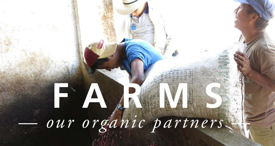 Meet Our Organic Coffee Farmers