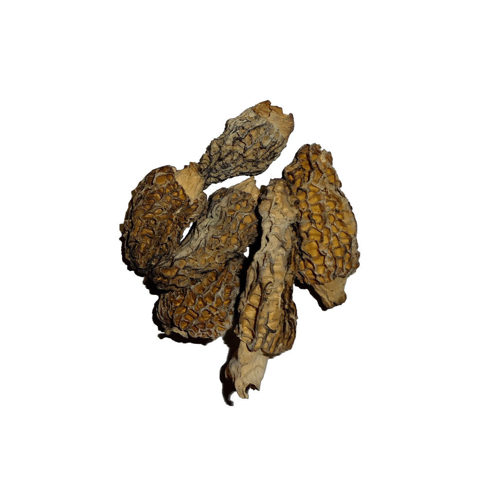 Dried Morel Mushrooms - The Herb Shop - Central Market - Lancaster, PA