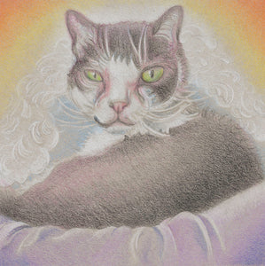 """Frisco"" of the Rainbow Cat series"