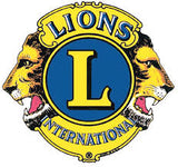 A Lions Club in Alberta just helped a family purchase a Snug Vest to give their son portable deep pressure therapy!