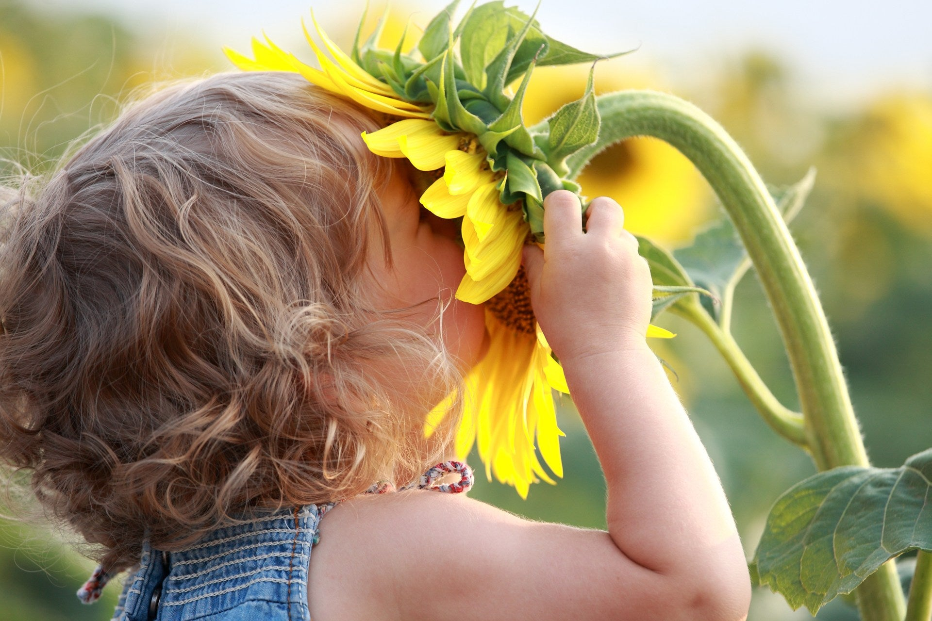 Child with Olfactory Dysfunction and autism sniffing a flower