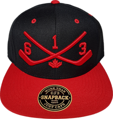 613 STICKS Snapback Hat