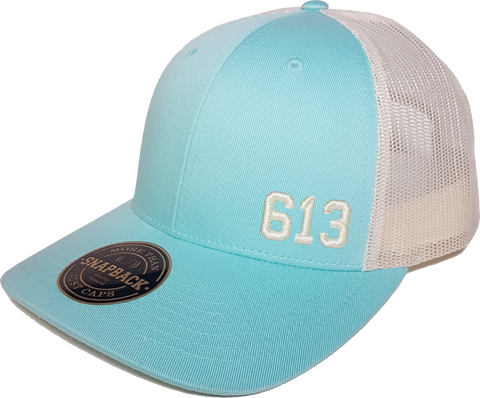 613 Low Profile Trucker Aruba Blue Birch