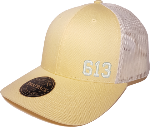 613 Low Profile Trucker Banana Birch