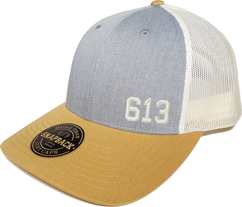 613 Low Profile Trucker Heather Grey Birch Amber Gold