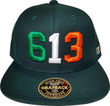 Ireland Snapback Cap 613 Forest Green