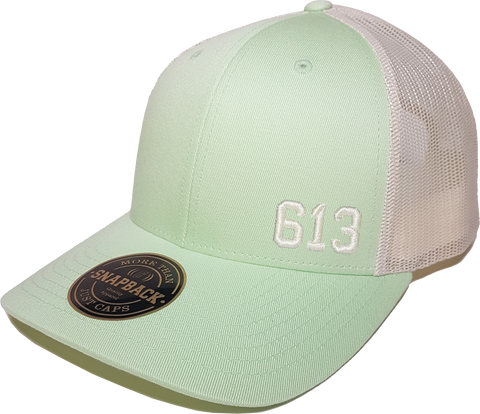 613 Low Profile Trucker Patina Green Birch