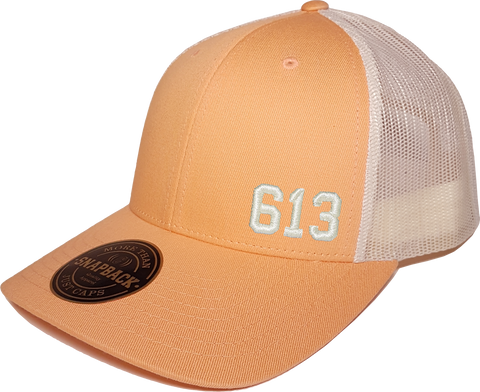 613 Low Profile Trucker Peach Birch