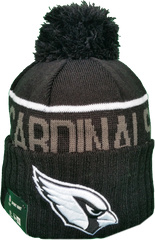 NFL Fleece Lined Black Toques