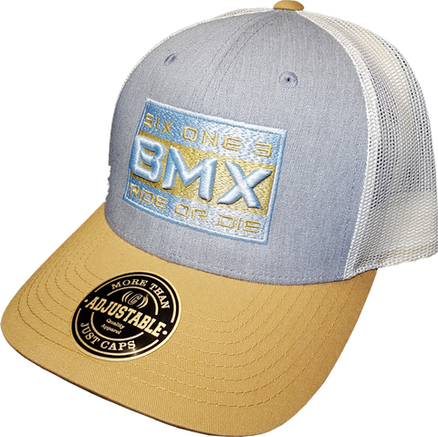 Six One 3 BMX Ride Or Die Mesh Back Trucker Cap Blue Gold