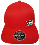 Jordan Cap Flex Fit FLS Red
