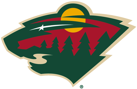 Minnesota Wild Jersey Numbering Pro Stitched 2 Layer
