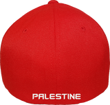 Palestine Cap Flex Fit FLS Red