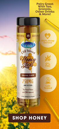 Experience CBD Infused Honey Sticks