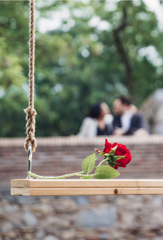 Proposing by a swing with a red rose