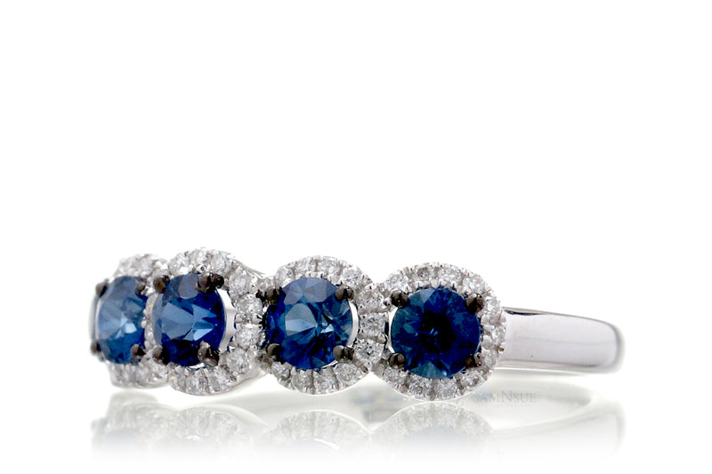 The Olivia Sapphire Band