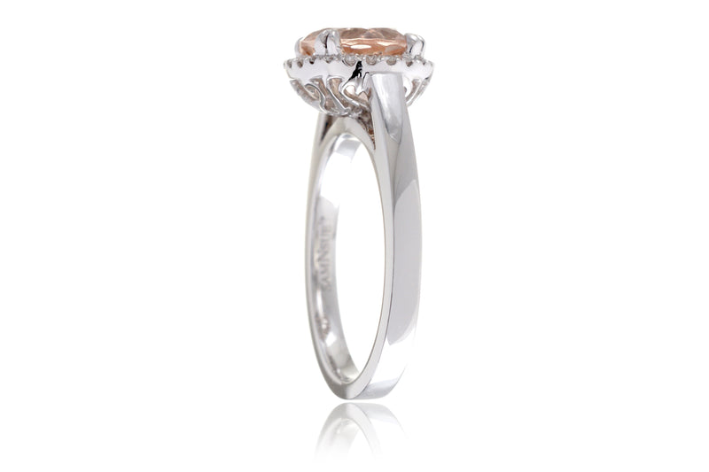 The Signature Round Morganite (Solid Band)