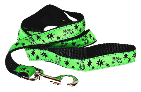 Dog Leash Green Photo