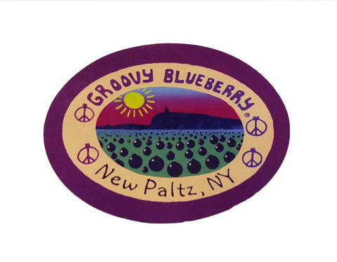 Groovy Blueberry Sticker