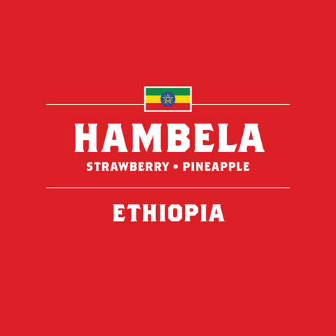 Ethiopia - Hambela - September 2015
