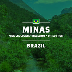 Brazil - Minas - 5 Pound Bag