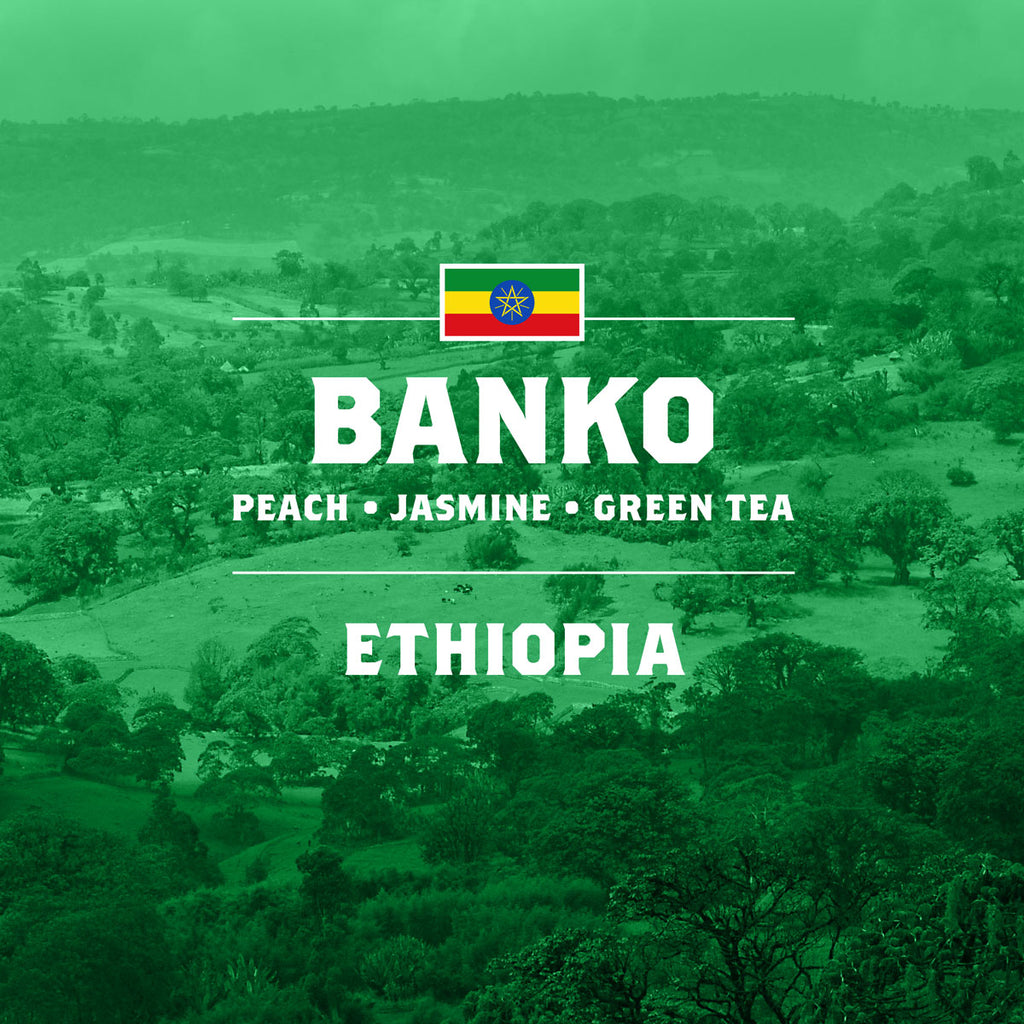 Ethiopia Collection: Shakiso + Banko + Chelchele