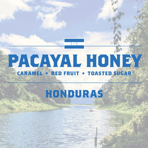 Honduras - Pacayal Honey