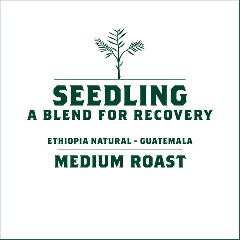 Seedling - A Blend for Recovery