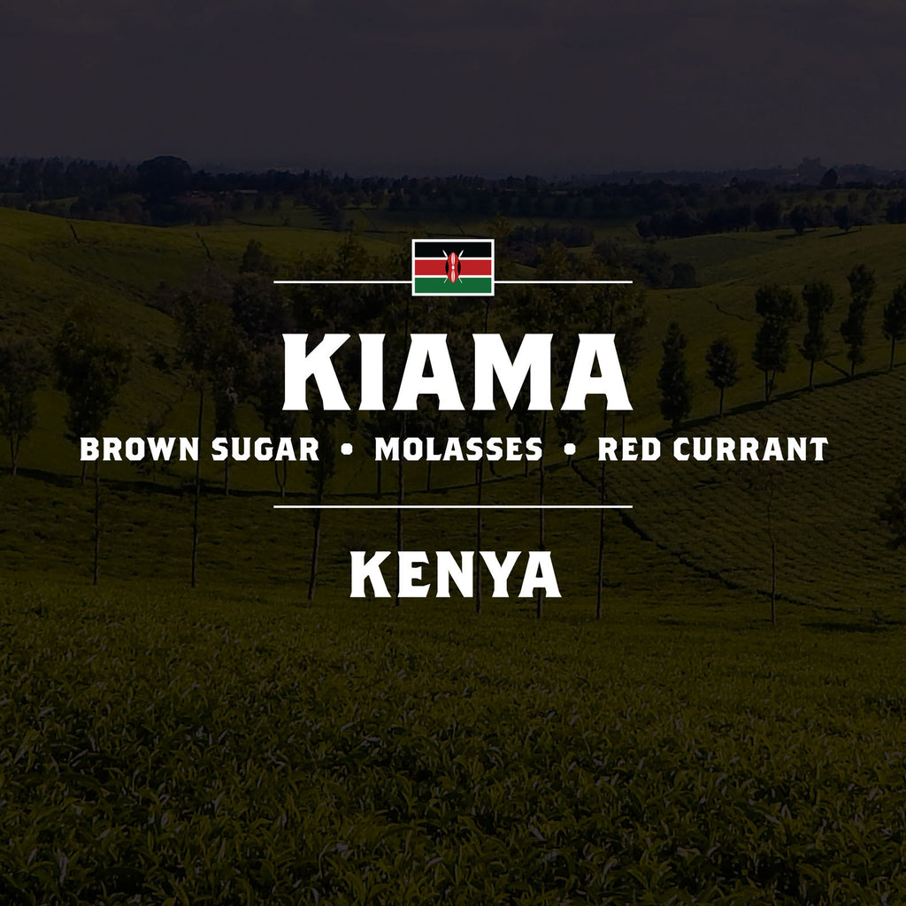 Kenya - Kiama - 5 Pound Bag