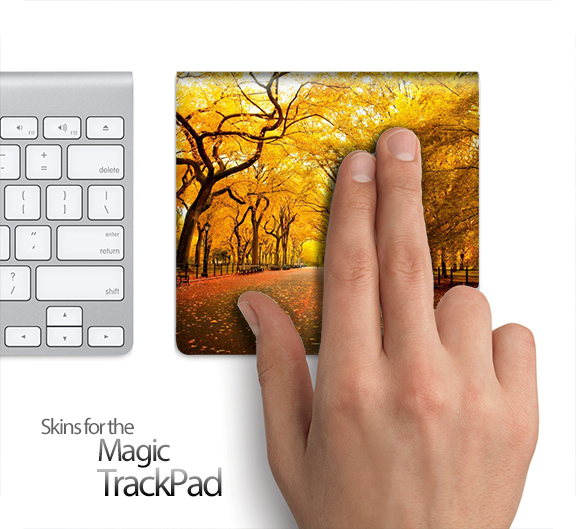Fall Open Road Skin for the Apple Magic Trackpad