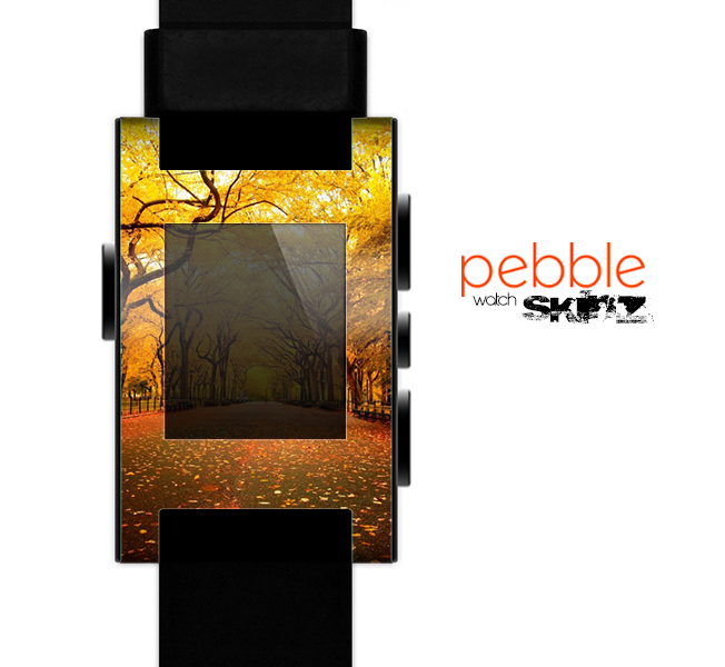 The Fall Back Road Skin for the Pebble SmartWatch