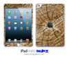 Cracked Wood iPad Skin