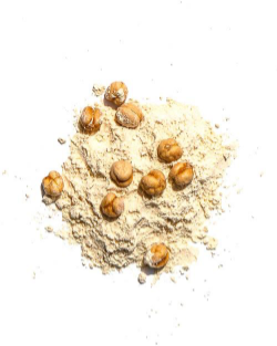 Garbanzo Flour