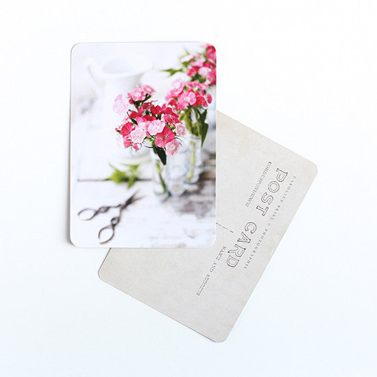 Cinq Mai - Carnation Post Card - Kudecoeur