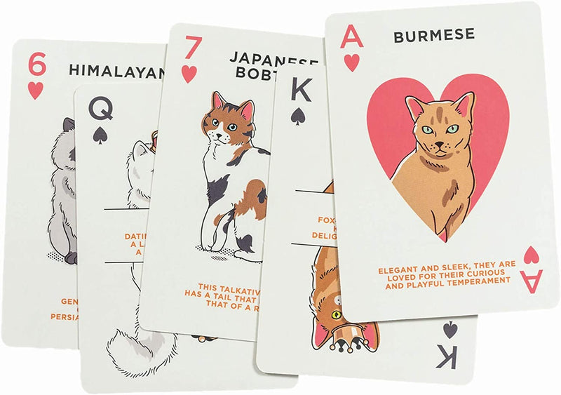 Cat Lover's Playing Cards in a tin