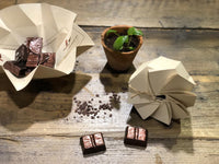Chocolate Cacao Box (8 cubes)