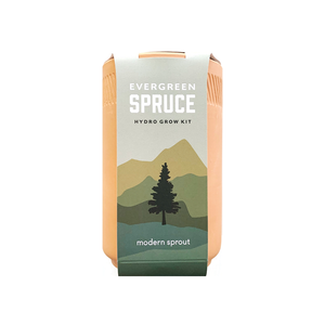 Evergreen Spruce Grow Kit