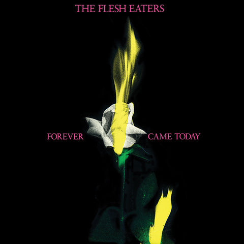 The Flesh Eaters - Forever Came Today CD