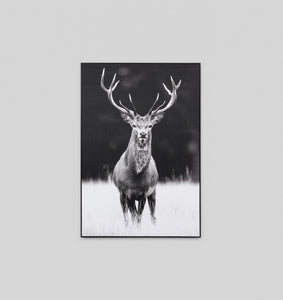 MEADOW DEER NEUTRAL · FRAMED CANVAS