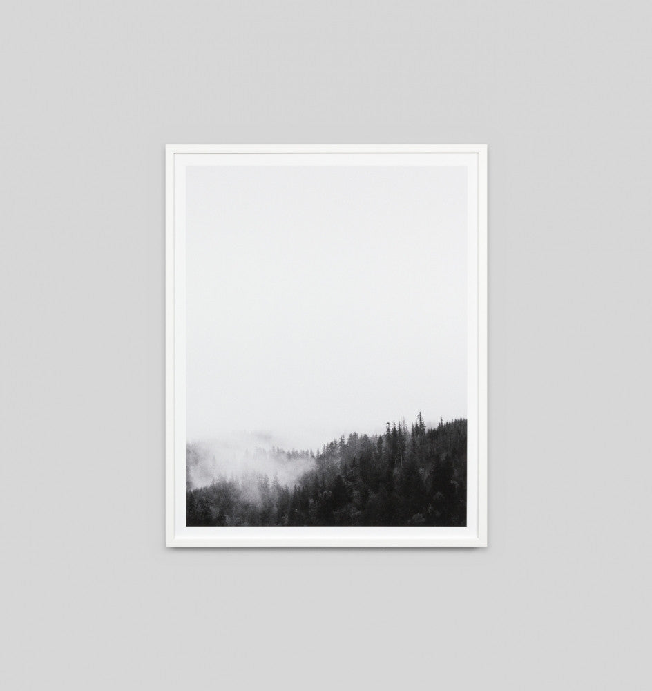 FOREST VIEW · FRAMED PRINT