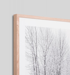 SNOWY TREES 1 · FRAMED PRINT