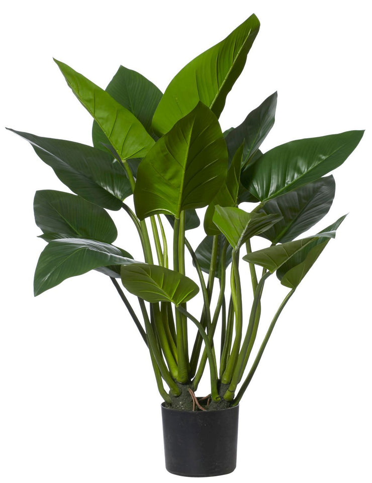 GREEN KINGDOM FAUX PLANT - The Banyan Tree Furniture & Homewares