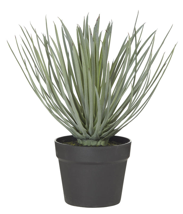 SPIKEY GRASS GARDEN POT