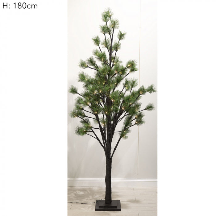 LIGHT UP PINE TREE | 180CM - The Banyan Tree Furniture & Homewares