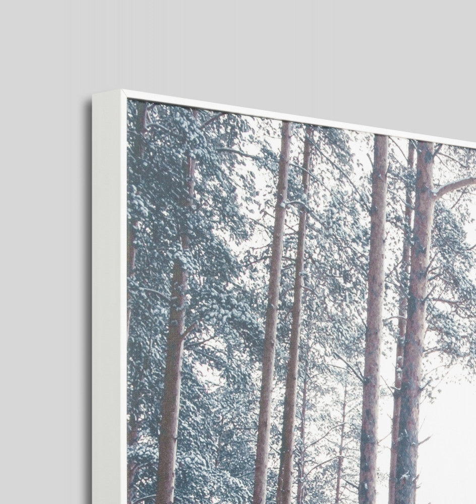 SNOWY TRACK · FRAMED CANVAS