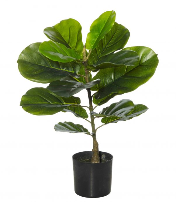 GIANT FIDDLE FAUX PLANT - The Banyan Tree Furniture & Homewares