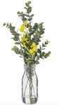WATTLE MIX-MILK BOTTLE