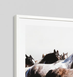 GALLOPING PONIES · FRAMED PRINT