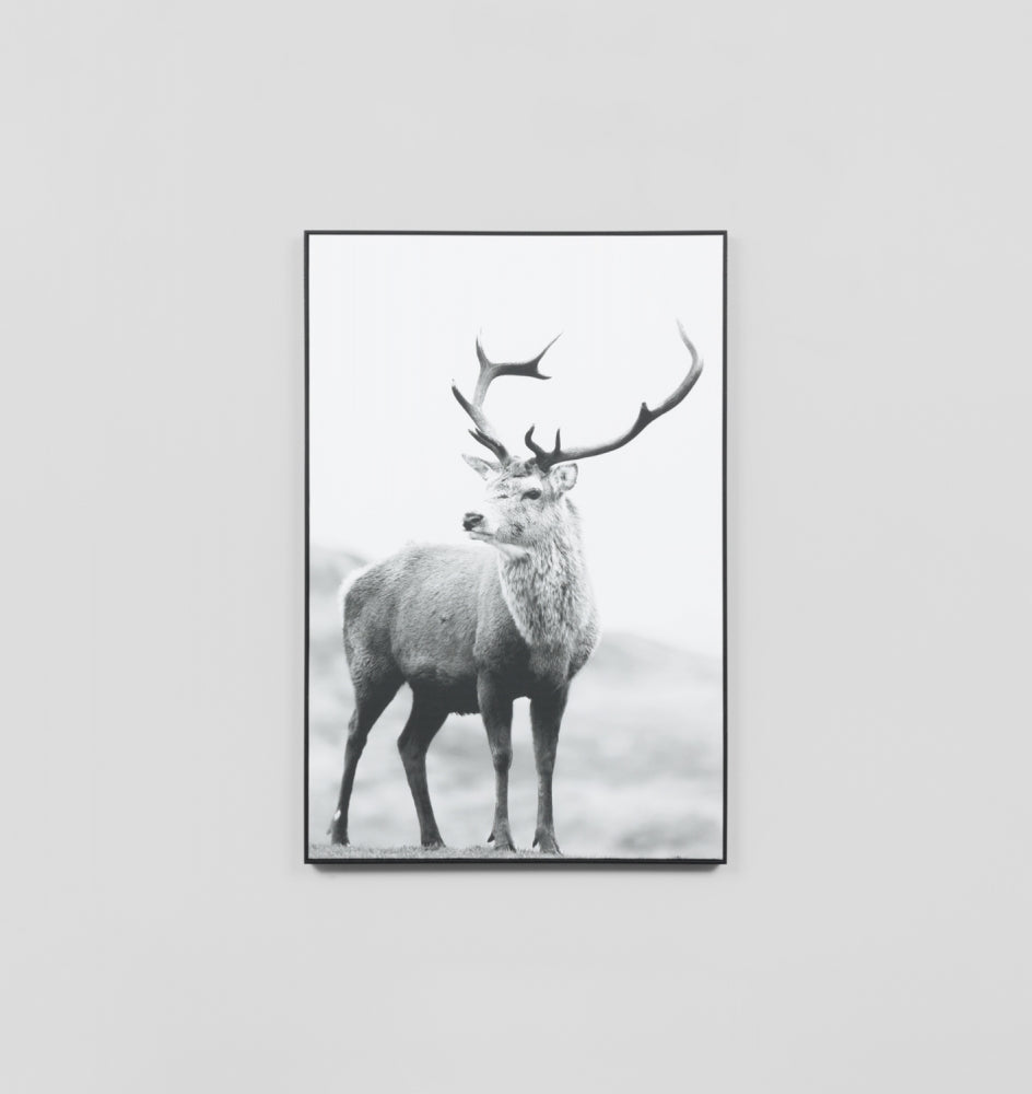 NORTHERN ELK GREY · FRAMED CANVAS